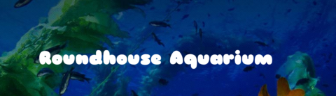 Manhattan Beach Roundhouse Aquarium